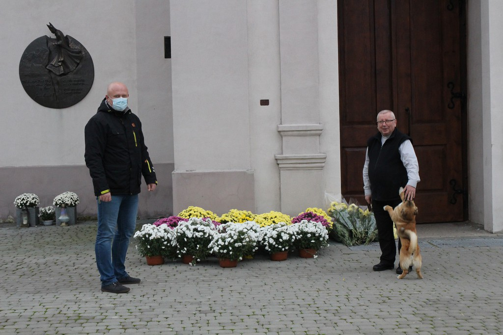 Akcja Chryzantemy w gminie Rozprza zakończona2.jpeg