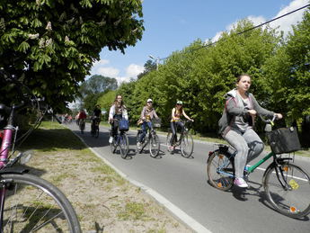 Galeria Rajd rowerowy - odjazdowy bibliotekarz 2015