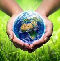 ekologia-ochrona-środowiska.jpeg
