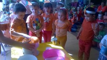 Galeria Marchewkowy dzień w Niechcicach