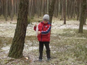 Galeria Najmłodsi uczniowie SP w Rozprzy pomagają leśnym zwierzętom przetrwać zimę