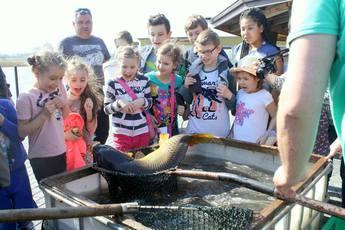 Galeria Dzieci i ryby głos mają