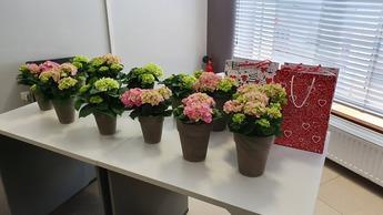 Wręczenie awansów oraz kwiatów z okazji dnia Bibliotekarza