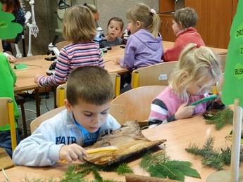 Galeria SP ROZPRZA Święto Drzewa